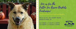 Fallin' for Rescue Baskets Fundraiser! - Uploaded by Mary Ann Bopp