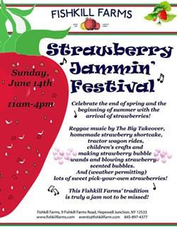 549d42ed_strawberry_jammin_festival_flyer-2.jpg