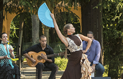 2c985a6e_flamenco-in-the-courtyard-2.png