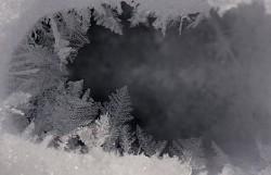 83e852f6_winter-tracking-280x180.jpg