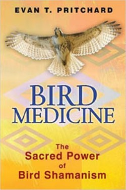 797ce698_bird_medicine.jpg