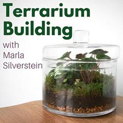 0201c812_terrarium_building.jpg
