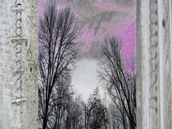 baa45527_purpleone_1.jpg