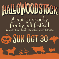 00679eab_hallowoodstock_homepage_slider_512x512_mobile_version_.png