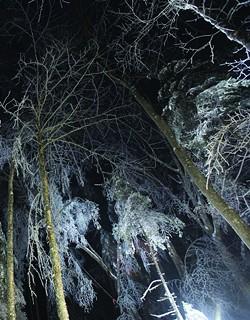 0f989dbb_rustad_ice_storm_night.jpg