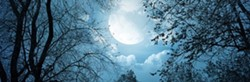 5efee43a_full_moon_gathering_-_spring_or_winter.jpg