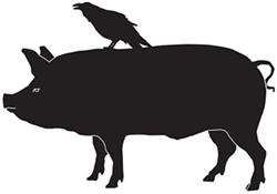 3f54b2c3_raven_and_boar_logo.png