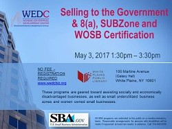 cb83b9d0_selling-to-the-government-8a-subzone-3.9.17.jpg