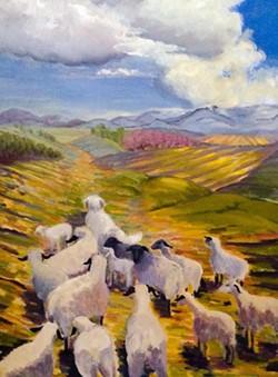 7c232637_aneshansley_sheep_in_field.jpg