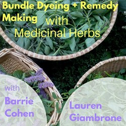 4f51ffbe_bundle_dyeing_remedy_making_with_medicinal_herbs.jpg
