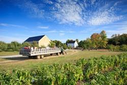 876af45b_dubois-farms.jpg
