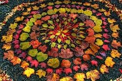 76f6b923_restorative_yoga_-_november_002_.jpg