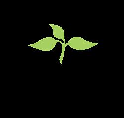 lfc_web_logo.png