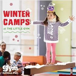 81422f4b_winter_camps.jpg