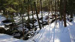 15743684_snowshoe-hike.jpg