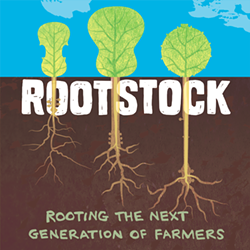 b2da22bf_rootstock_2018.png