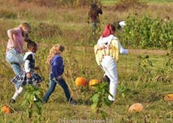 127b080d_picking_a_pumpkin2_at_halloween_fest_2017.jpg