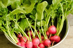 Fresh Local Produce! - Uploaded by The Pfeiffer Center