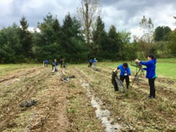 SUNY New Paltz volunteers - Uploaded by Phillies Bridge Farm Project