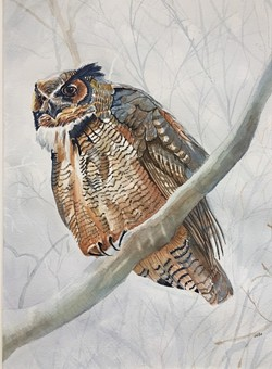 Otto Miranda's watercolor paintings will be shown in July and August at the Hudson Area Library - Uploaded by Hudson Area Library