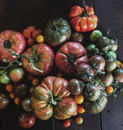 Tomatoes from Blooming Hill Farm - Uploaded by Atlas