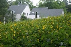James & Ellen Best's Sara Stein Garden - Uploaded by gardencon