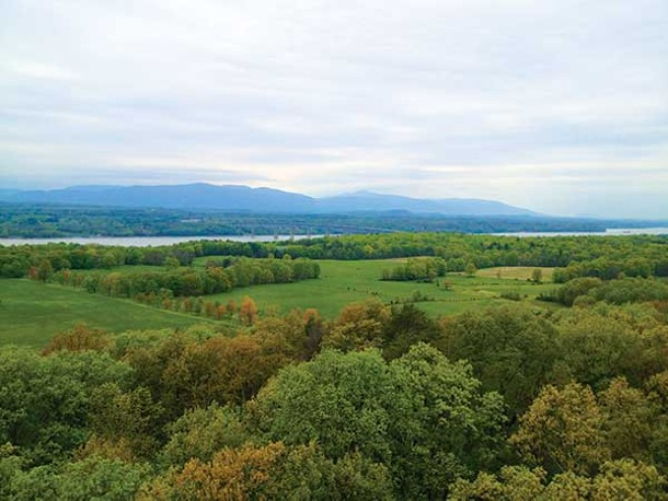 View from the Ferncliff Forest Fire Tower. - CHRIS CRING