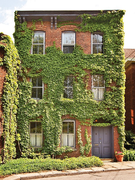 Vine covered 1869 three-story brick Italianate townhouse in the Rondout section of Kingston.