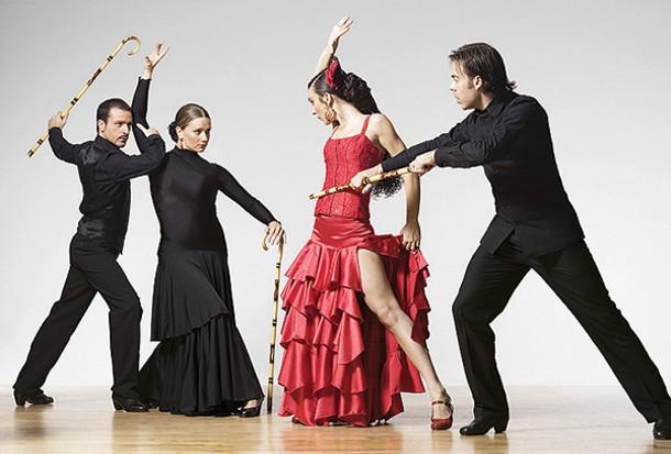 Vivo Flamenco