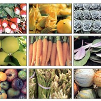 Winter Farmers' Markets