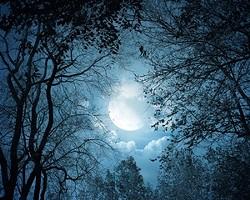 eaa7a608_full-moon_header_300.jpg