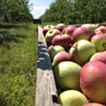 11 Spots for Apple Picking in Greater Cleveland