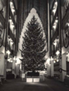1960: Christmas tree in main lobby, Sterling-Lindner-Davis.
