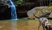 20 Greats Hikes to Take in Ohio