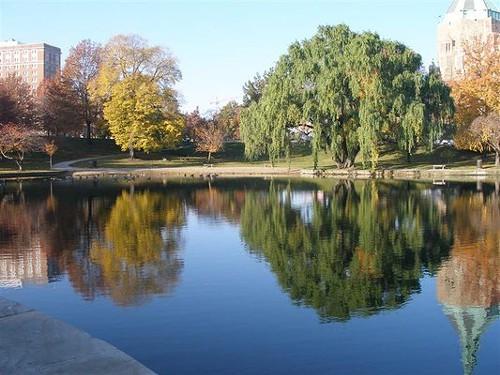 Wade_Park_Lagoon_-_Yelp_User_Cara_L..jpg