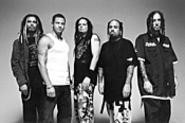 Amid his bandmates' exotic hairstyles, David Silveria - (second from left) stands out like an unpopped kernel.
