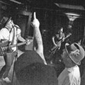 Band of the Week: Two Cow Garage
