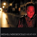 CD Review: Meshell Ndegeocello
