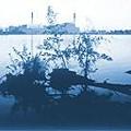 A Take on the Lake