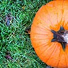 Fall at Pickering Hill Farms
