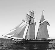 Freedom Schooner Amistad sets sail in the 21st - century (Monday).