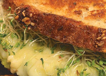 Grilled Cheese Cookbook Author Shane Kearns Hopes to Open Local Cheese Shop