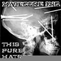 Hatecore Inc.