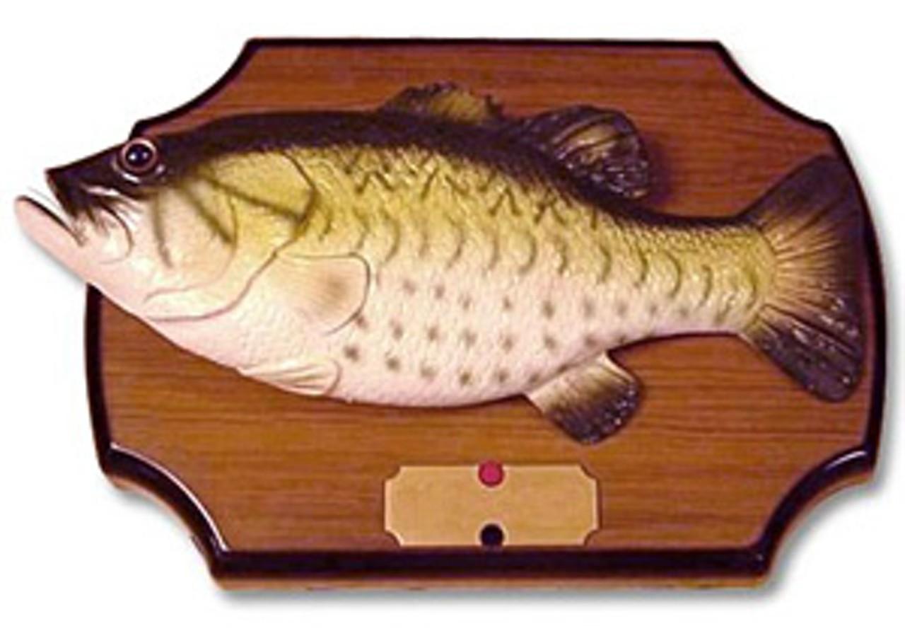 Massillon football star and ohio state recruit devoe for Ohio state fish