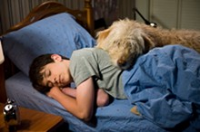 diary-wimpy-kid-dog-days.jpg