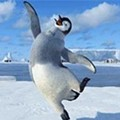 Dance of the Penguin