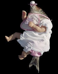 Jane Critchlows Reborn exhibit: The stork that delivered this one was flying high . . . really high.