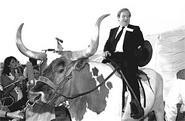 Jerry Falwell, circa 1984, when he was content to ride large farm animals instead of blaming terrorist attacks on gay people. - AP PHOTO/DAVID BRESLAUER