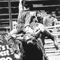 Loads of Bull