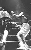 Raging bulls: Friday Night Fights come to the Gund.
